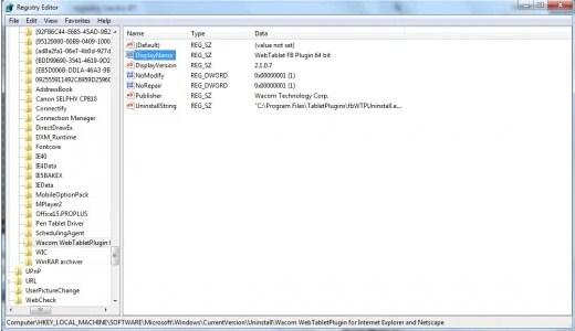 Nama tampilan Windows Registry.